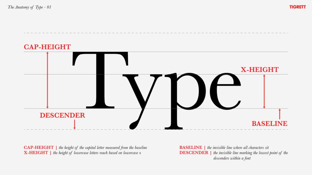Typographic Terminology The Anatomy Of Type 01 The Basics The