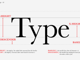 Typographic Terminology: The Anatomy of Type - 01 The Basics